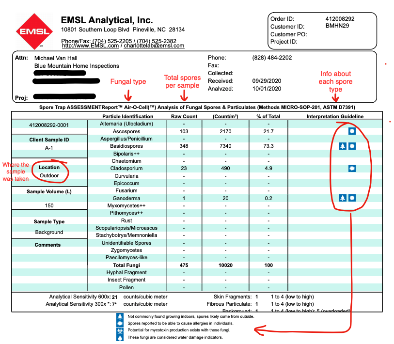 sample screenshot of mold and fungus report